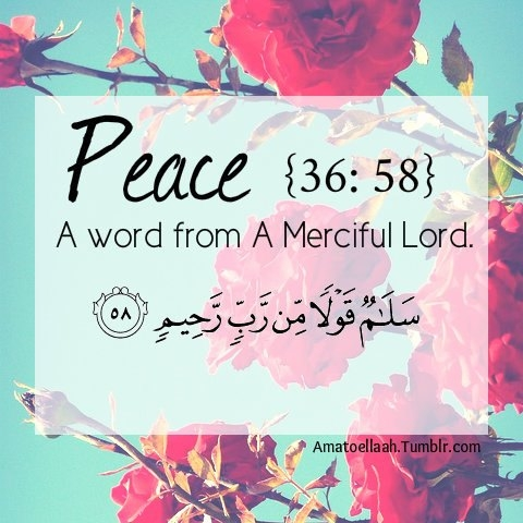 Moslim Paradijs